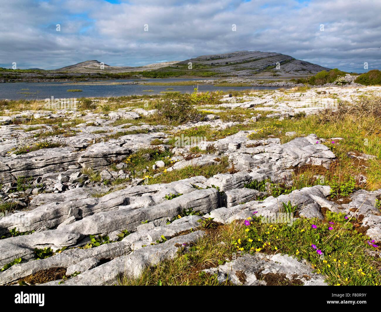 Gealain Lough, Mullagh plus, le Burren, comté de Clare, Irlande, la façon sauvage de l'Atlantique Photo Stock