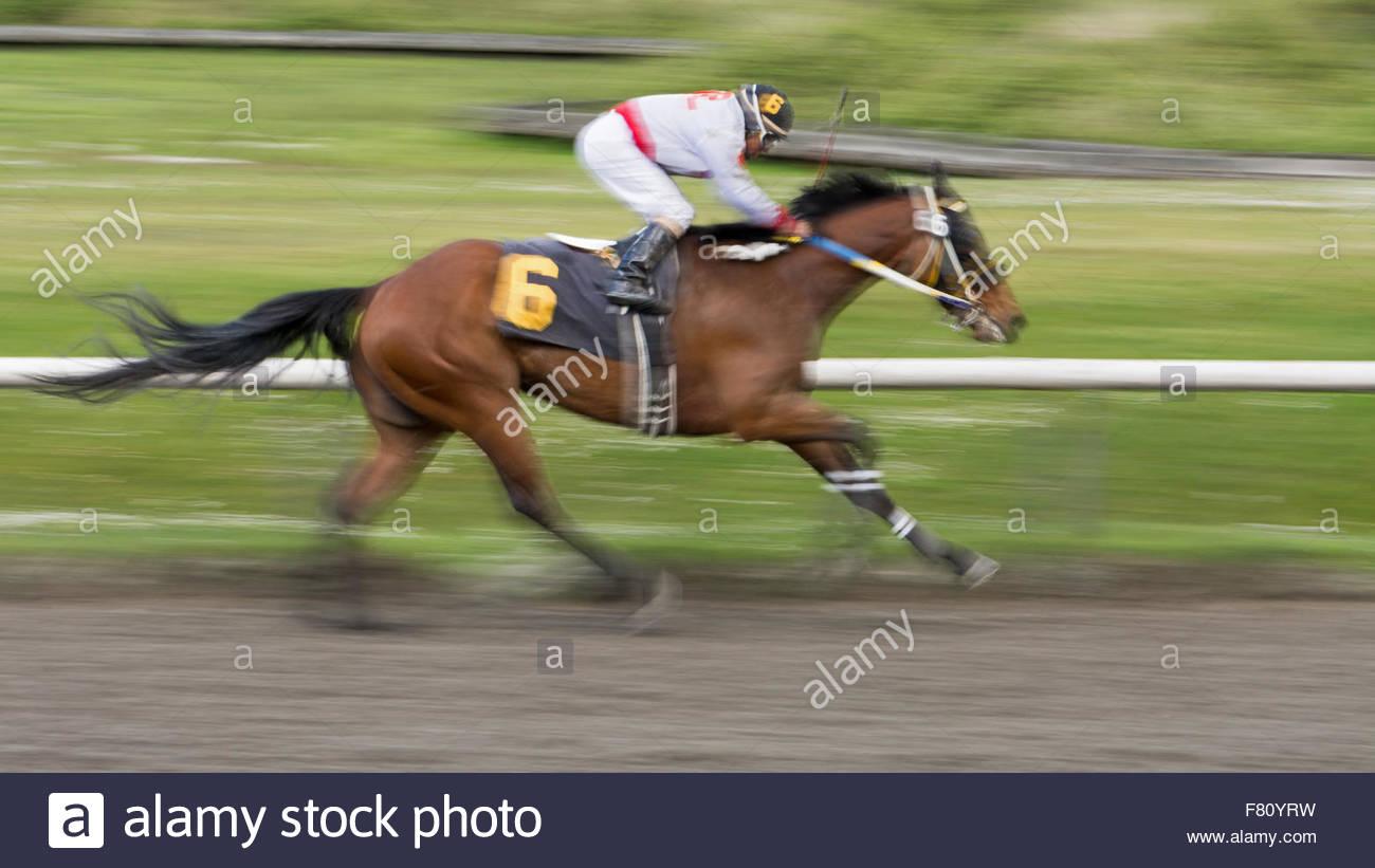 Un jockey et son cheval course vers la ligne d'arrivée. Effectué avec une faible vitesse d'obturation Photo Stock