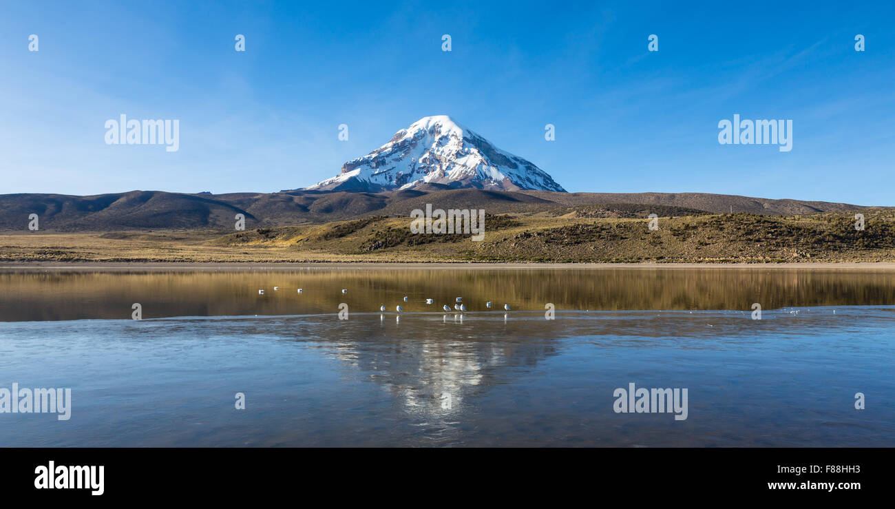 Huañacota volcan Sajama et le lac, dans le Parc Naturel de Sajama. La Bolivie Photo Stock