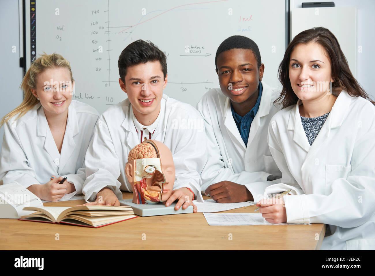 Groupe d'étudiants en classe de biologie Photo Stock