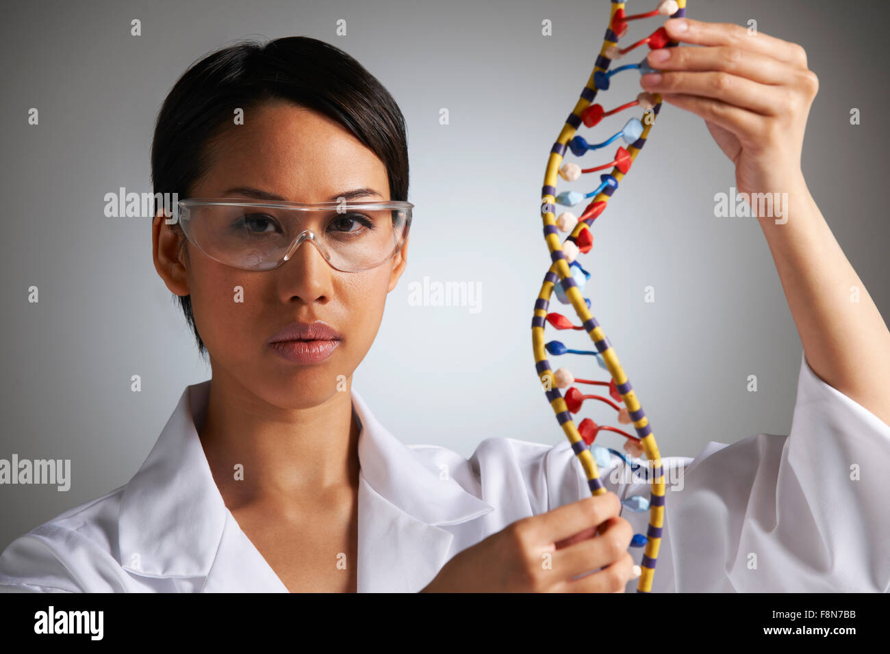 L'étude scientifique des femmes modèle moléculaire dans la forme d'Helix Photo Stock