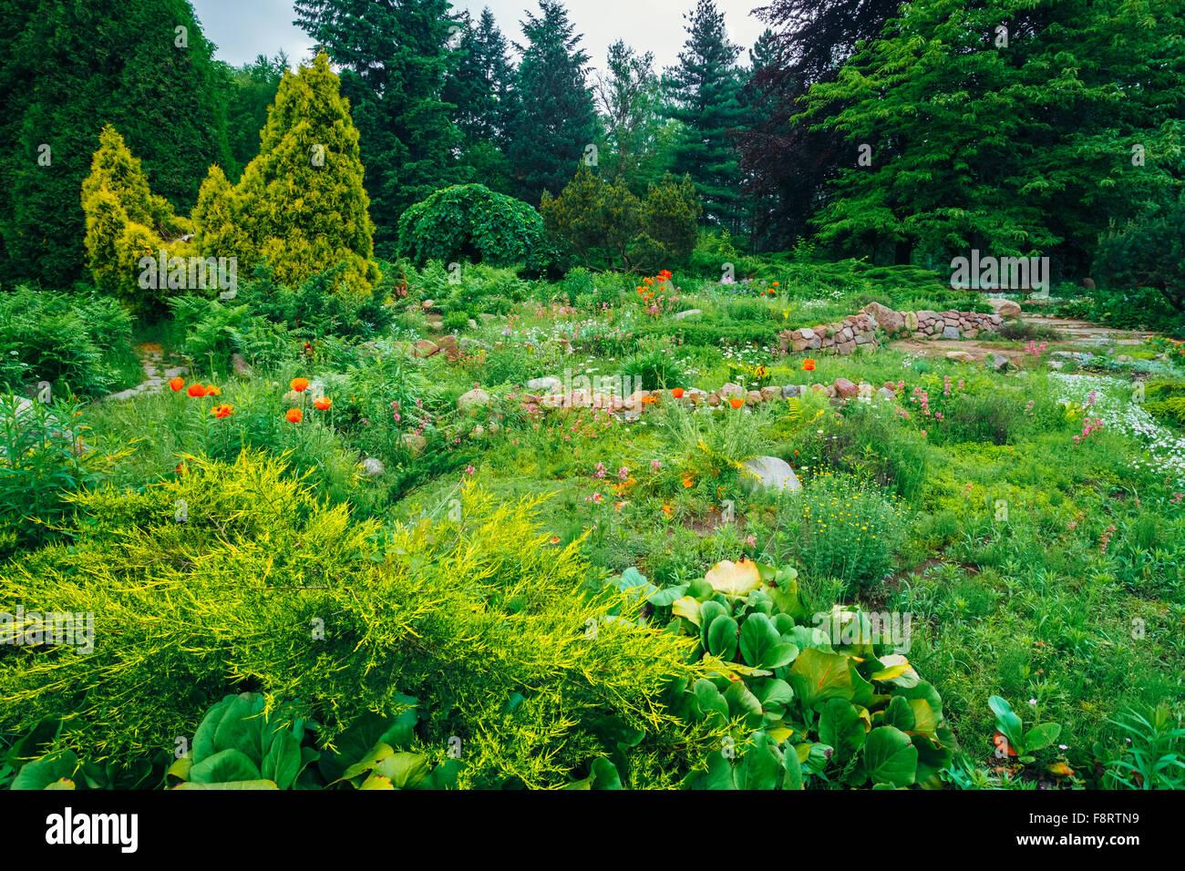 Aménagement D Un Parterre De Fleurs parterre de fleurs, de petits arbres et buissons verts