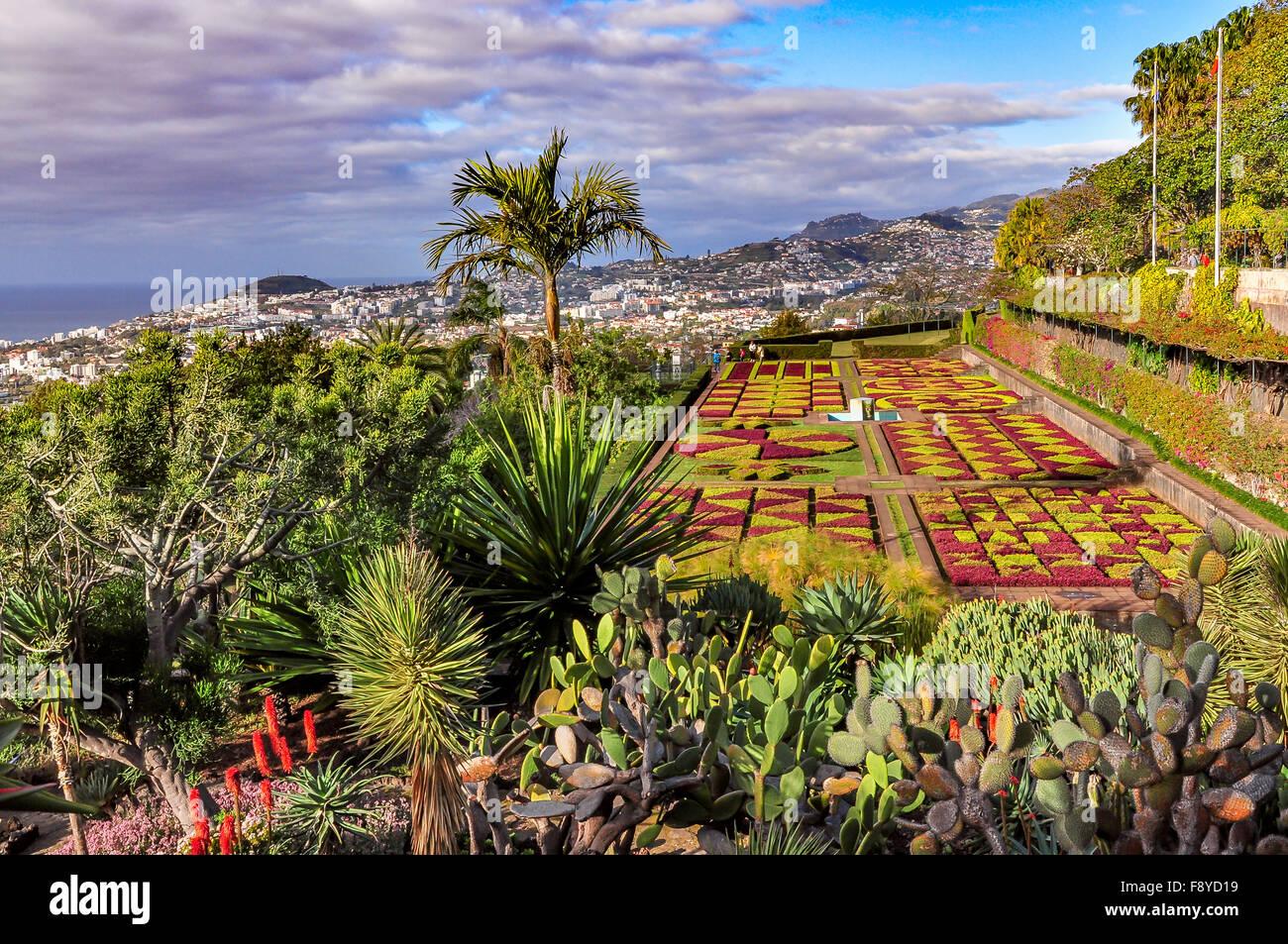 Jardin botanique de Funchal et vue panoramique de la ville sur une journée nuageuse, Madeira, Portugal Photo Stock
