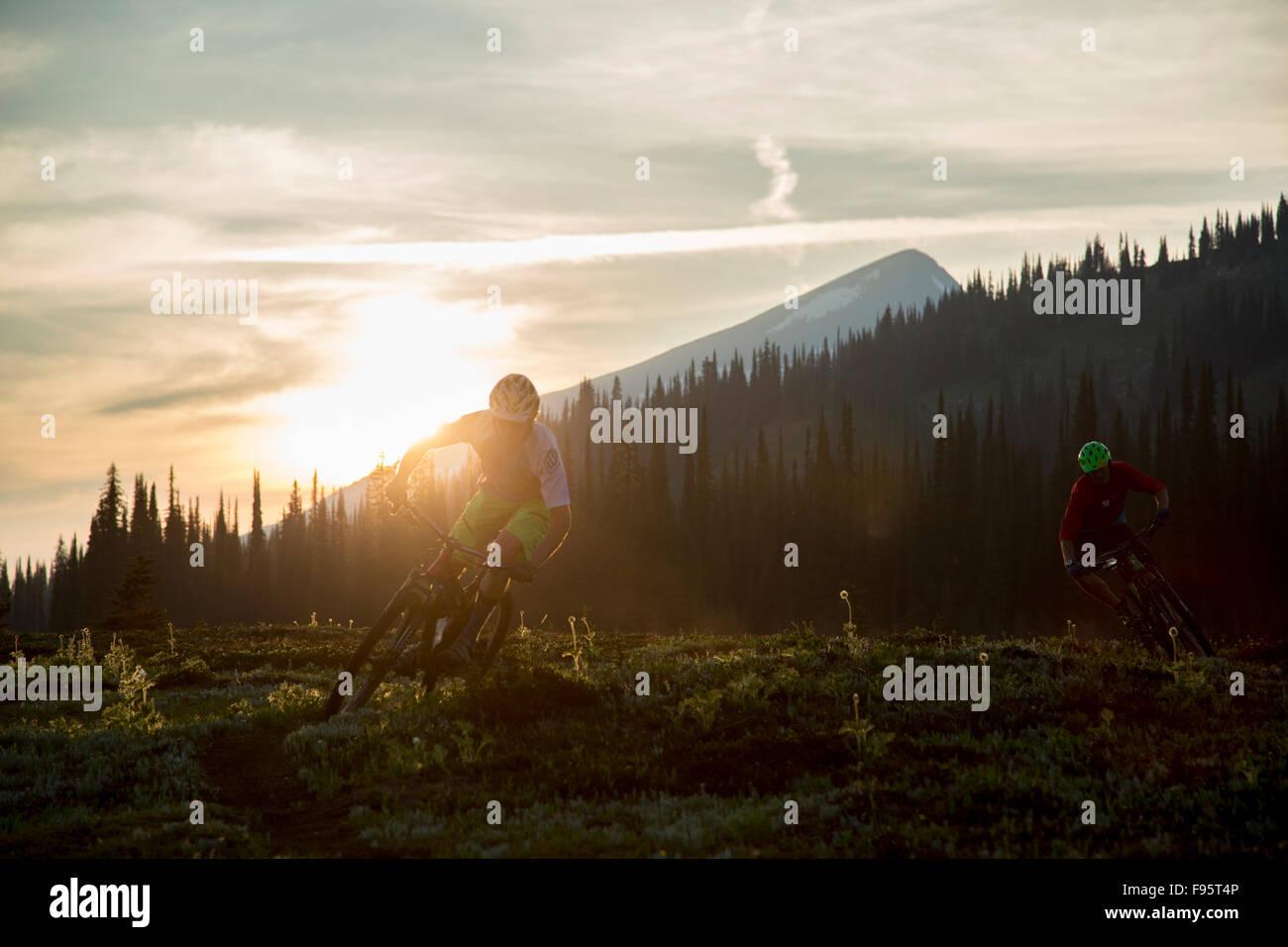 Randonnée cycliste, Singletrack, Mont Fostall, montagnes Monashee, Sol Mountain Lodge, Colombie Britannique, Photo Stock