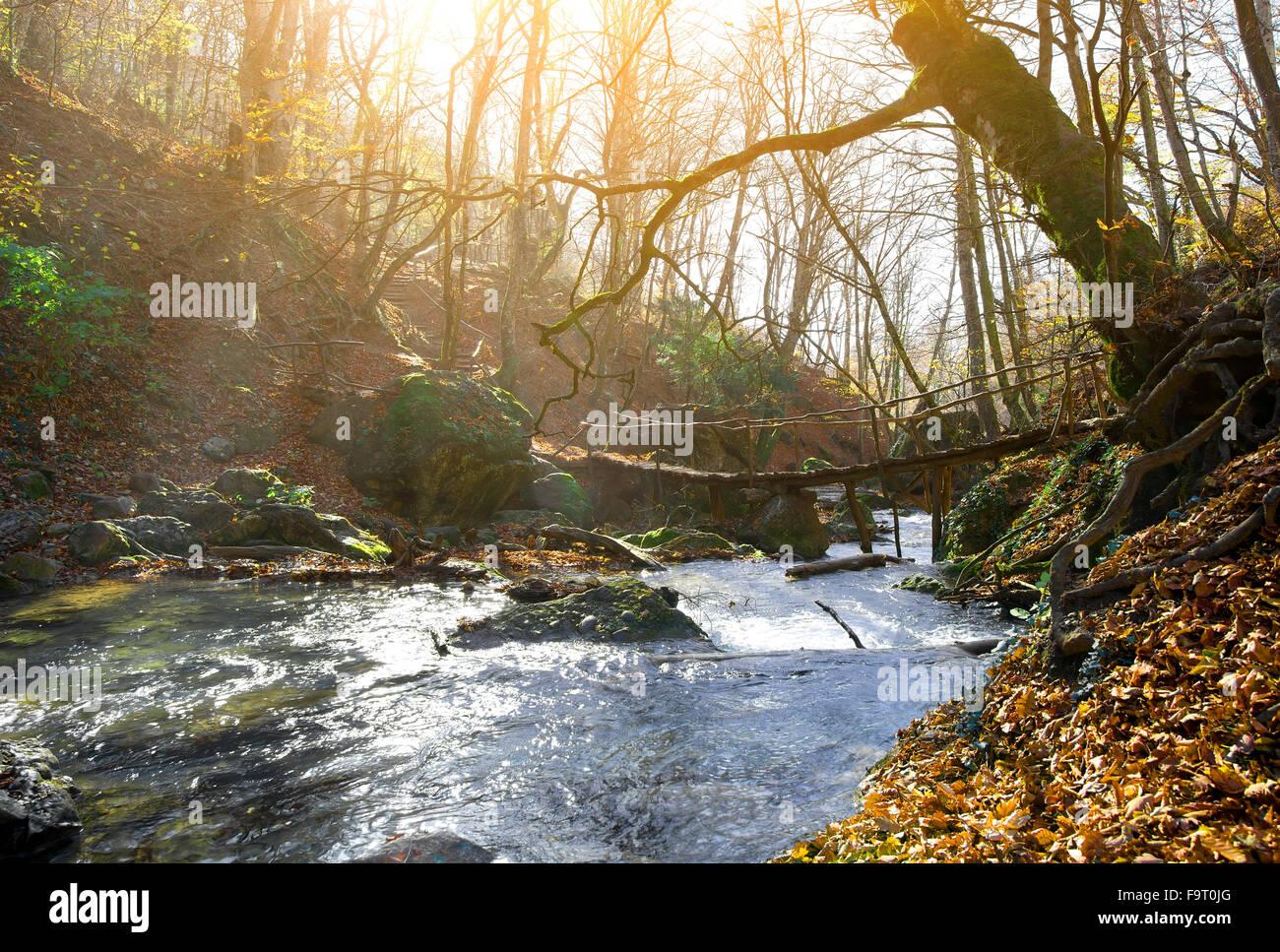 Pont en bois et de la rivière de montagne en automne Photo Stock