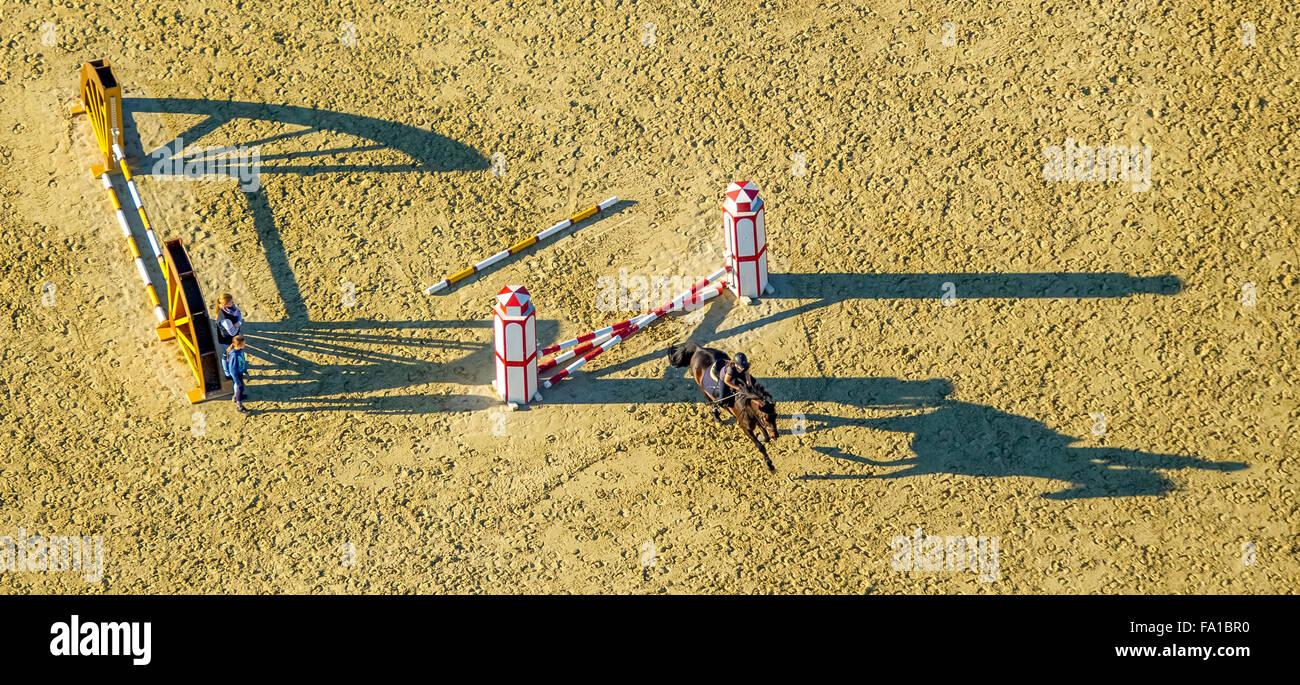 La formation d'obstacles avec de longues ombres, l'équitation, Reiterhof Rhynern, cavalier, chevaux, Photo Stock