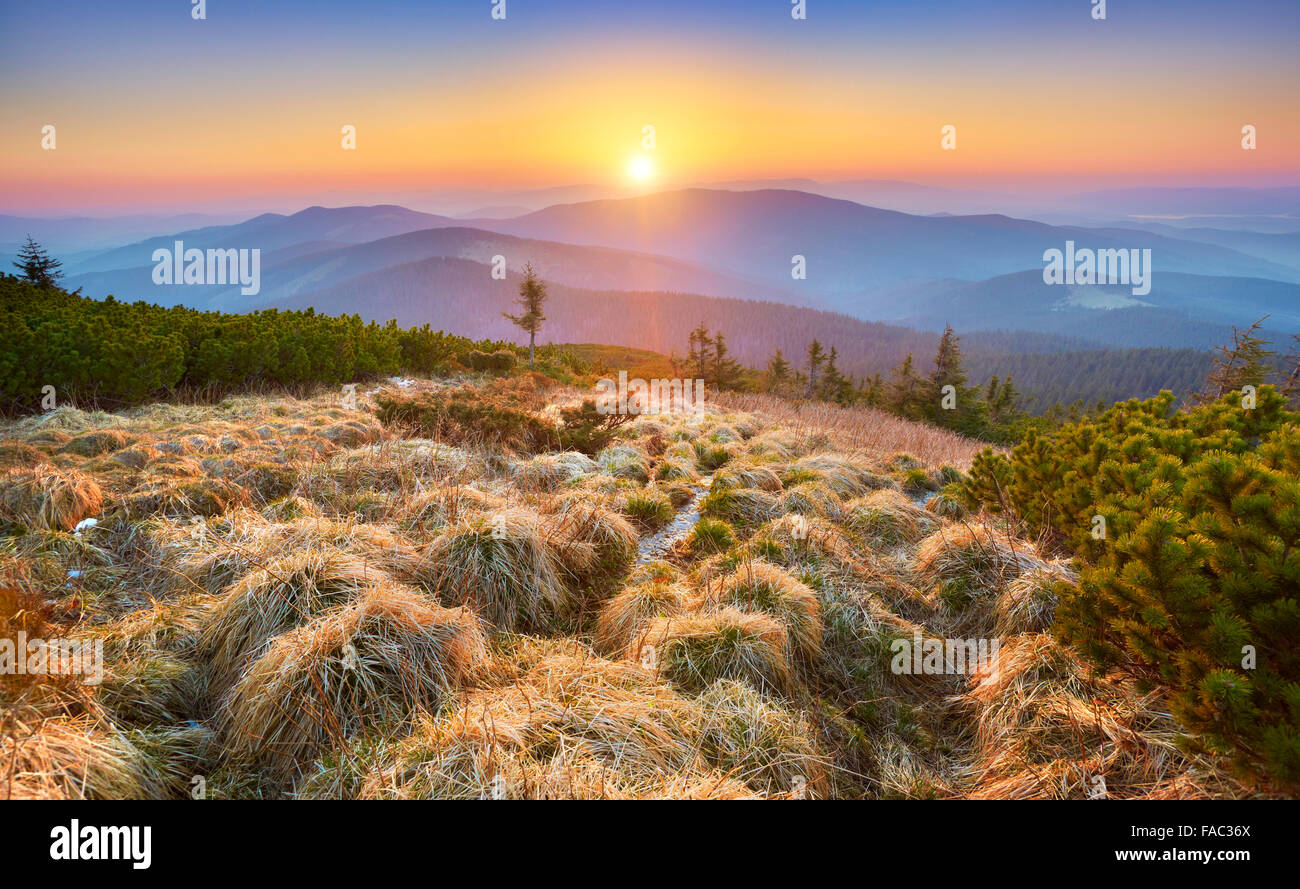 Montagnes des Beskides, coucher du soleil à l'Apogée Pilsko, Pologne Photo Stock