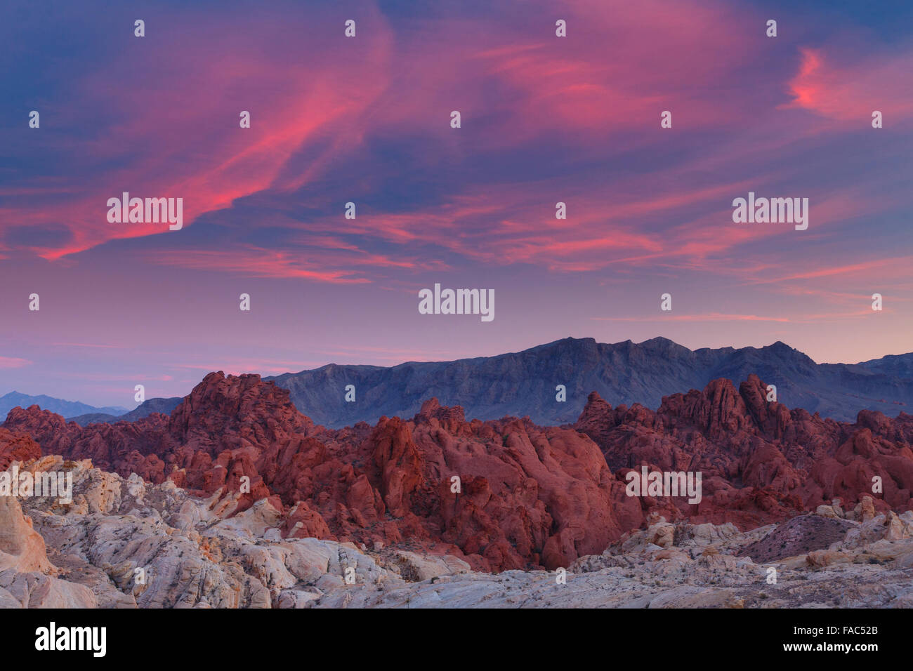 Dôme de silice, Vallée de Feu, près de Las Vegas, Nevada. Photo Stock