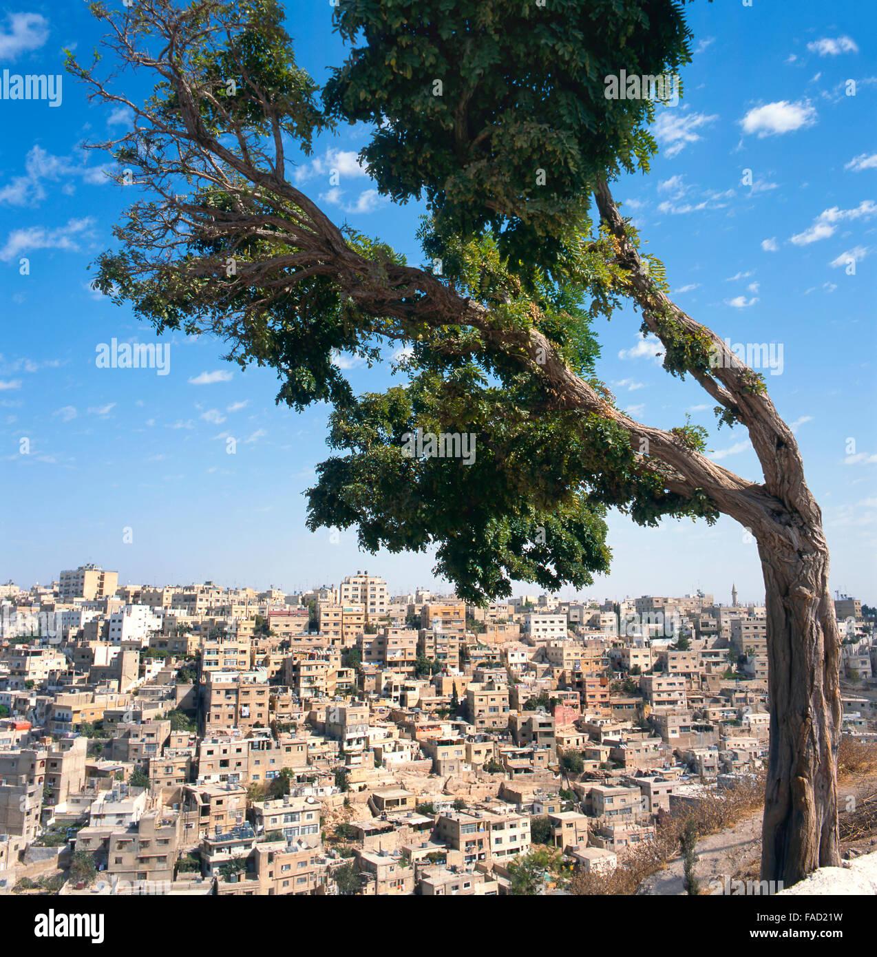 Voir à Amman en Jordanie. Vu de la citadelle Photo Stock