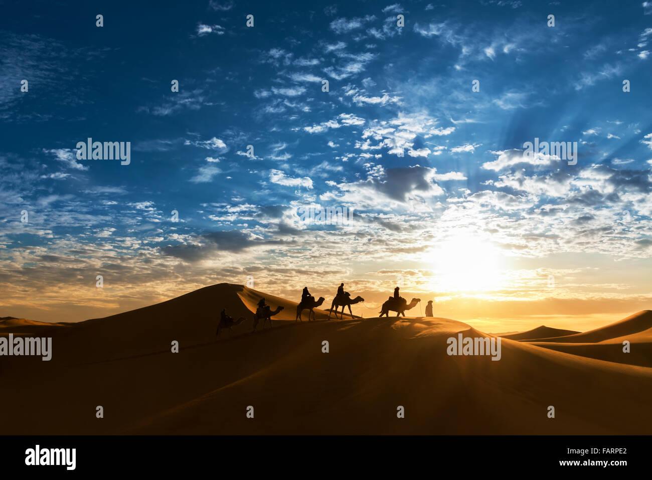 Caravane dans le désert pendant le lever du soleil contre un beau ciel nuageux. Banque D'Images
