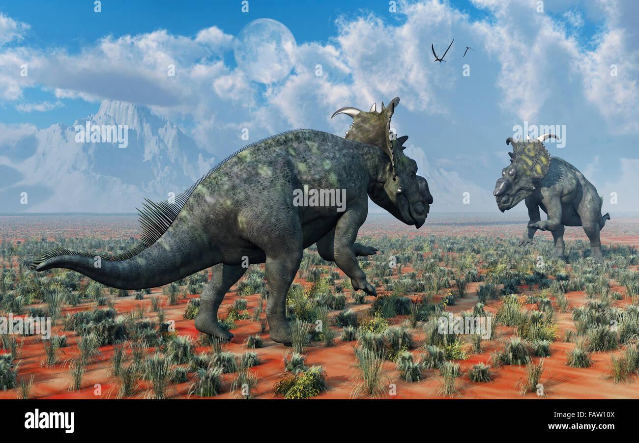 Une paire de Pachyrhinosaurus dinosaures , dans un conflit territorial. Banque D'Images