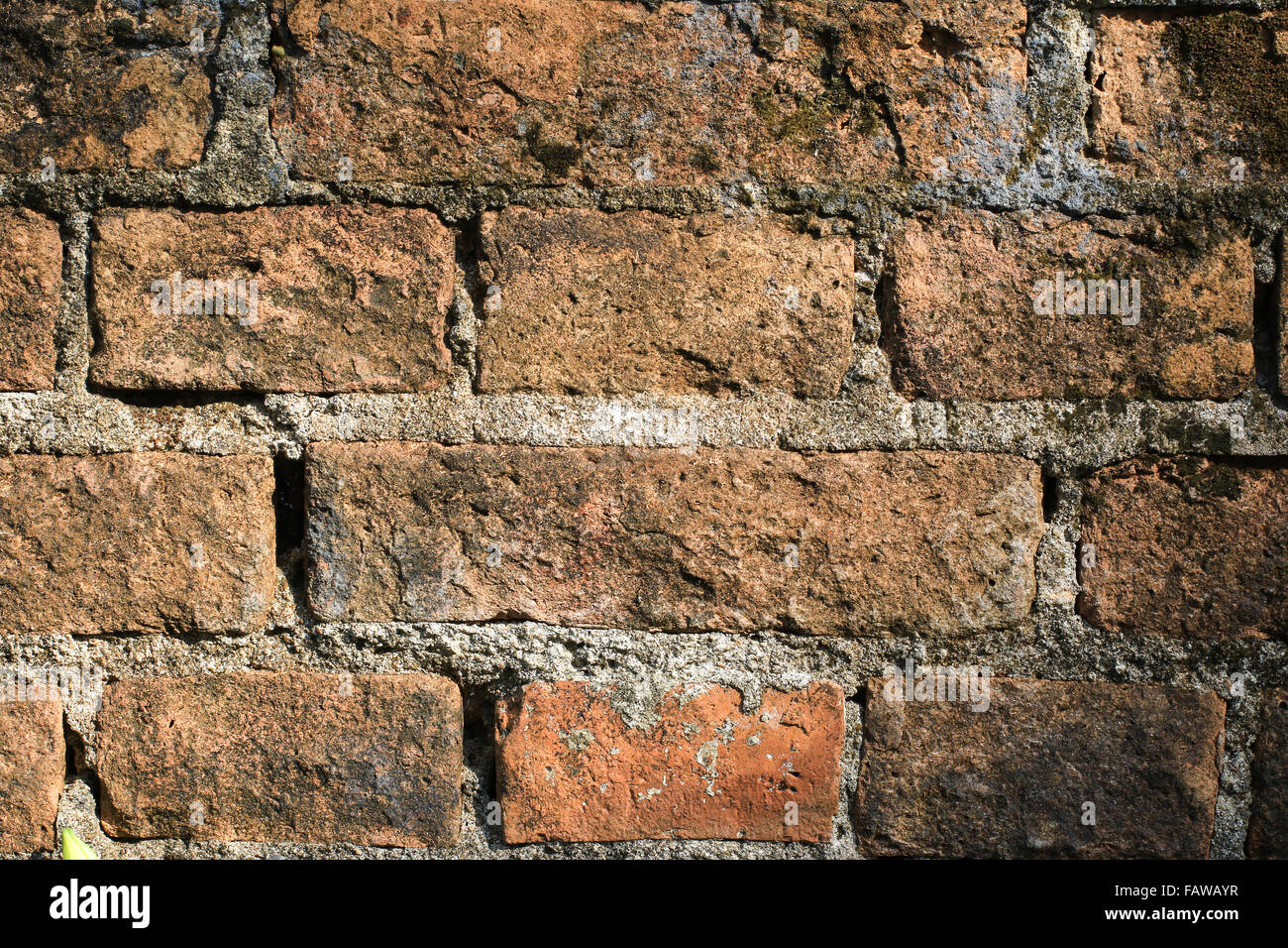 Mur de brique et fonds Photo Stock