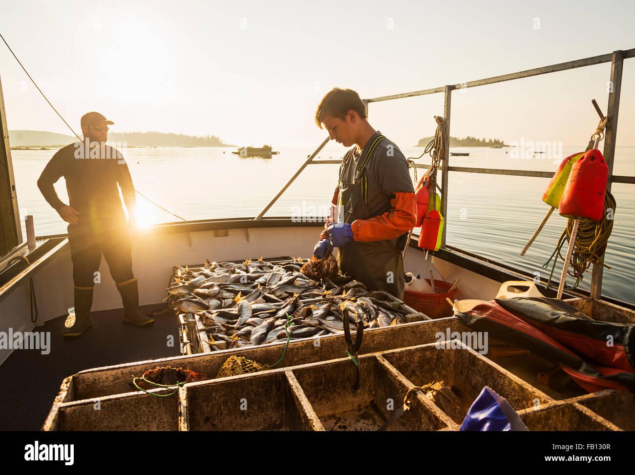 Deux pêcheurs travaillant sur le bateau Photo Stock