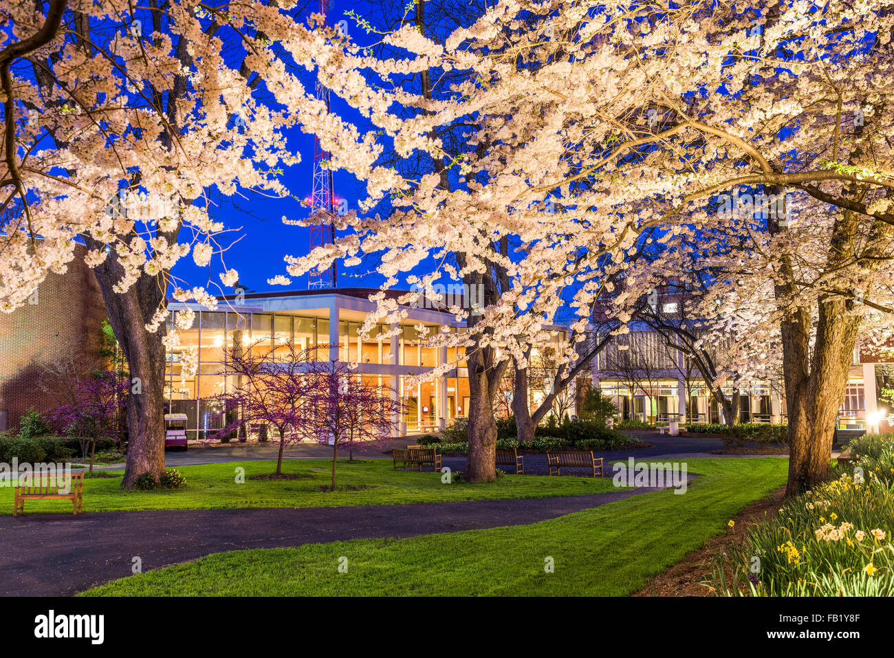 Printemps college campus dans la nuit. Photo Stock