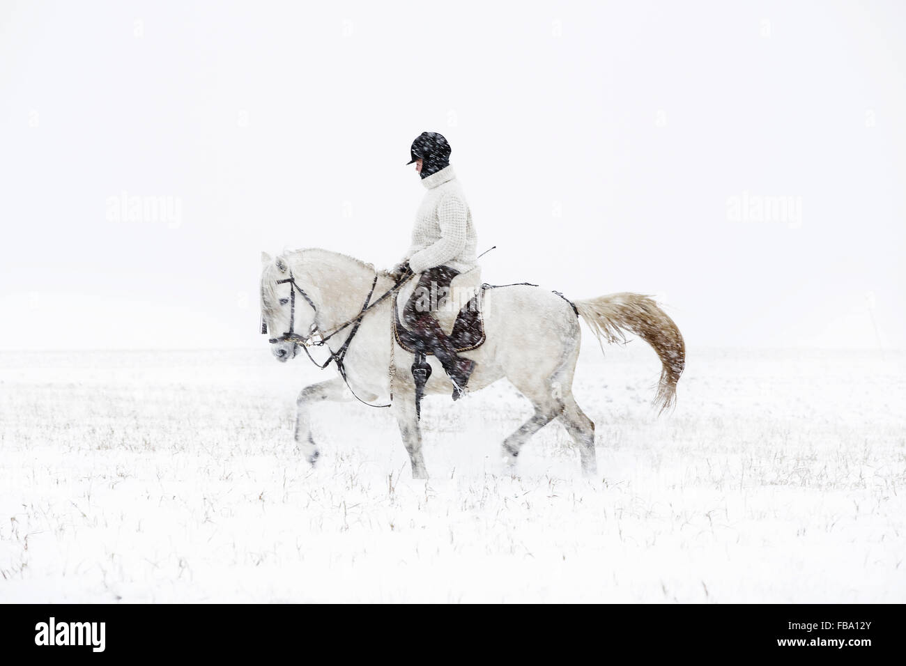 La Suède, Teenage girl (14-15) riding horse Photo Stock