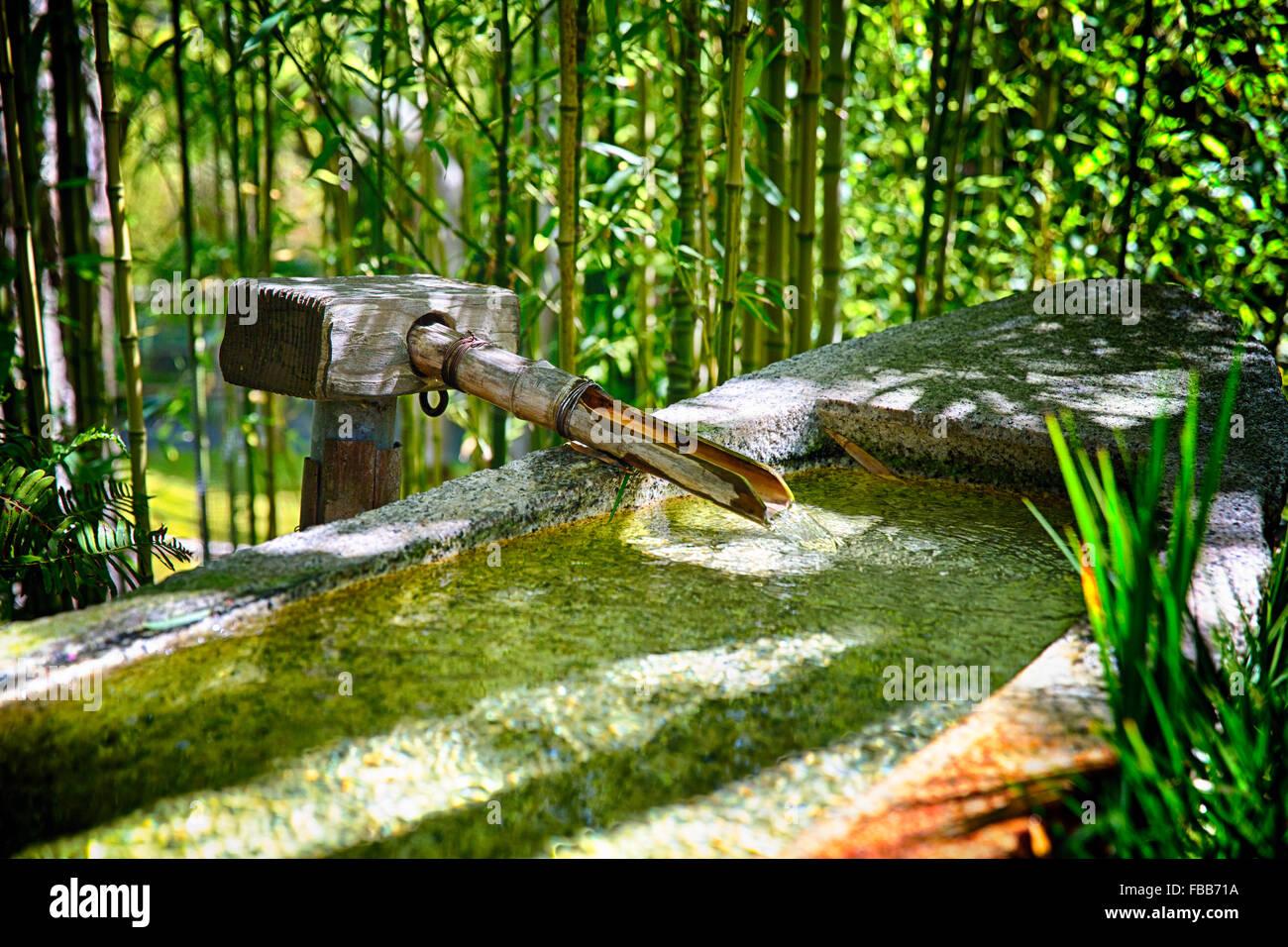 Vue rapprochée d\'une pipe du bambou et du bassin en granit avec ...