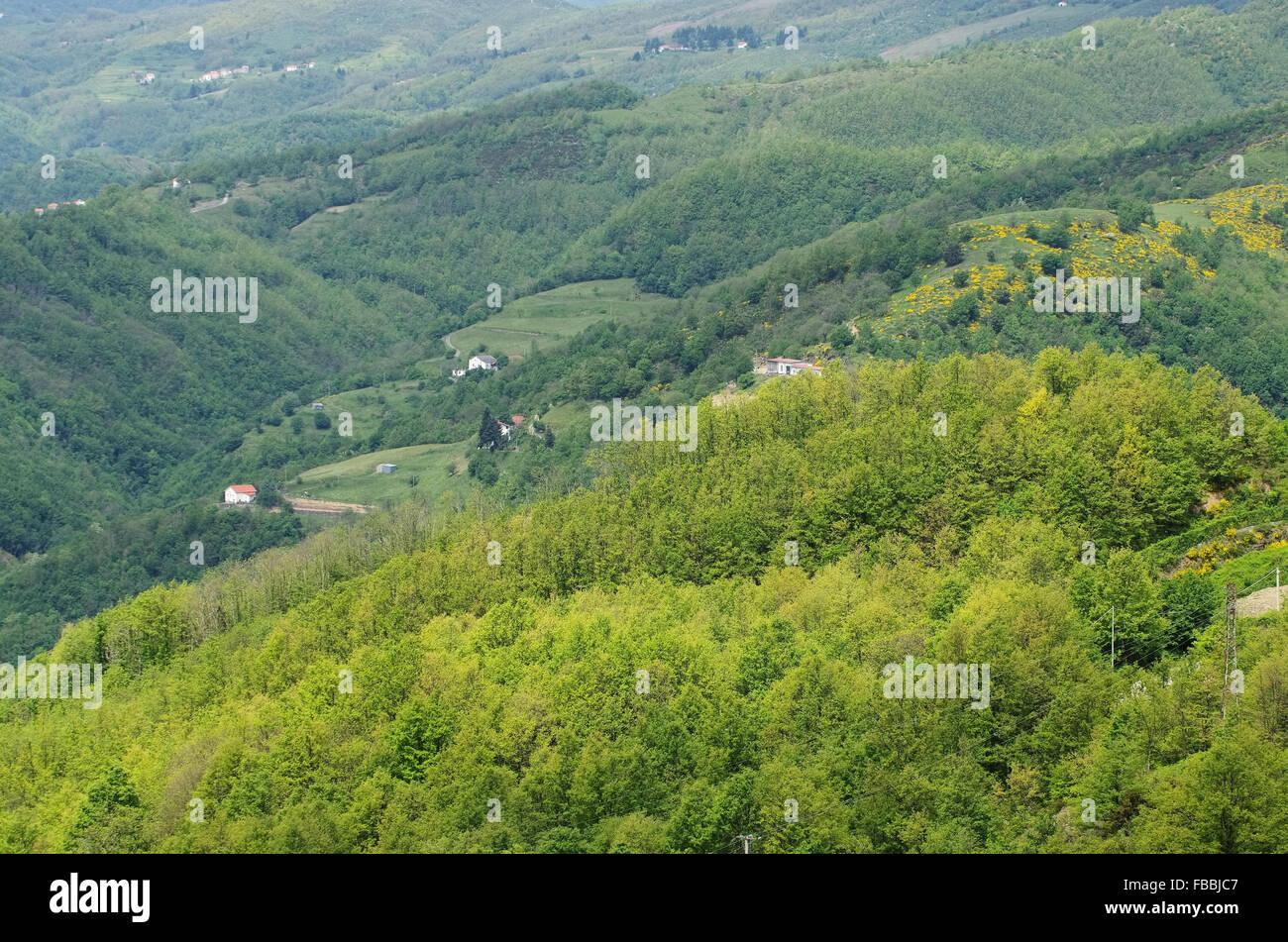 L'Apennin Apennins ligurien Ligurischer - 01 Photo Stock