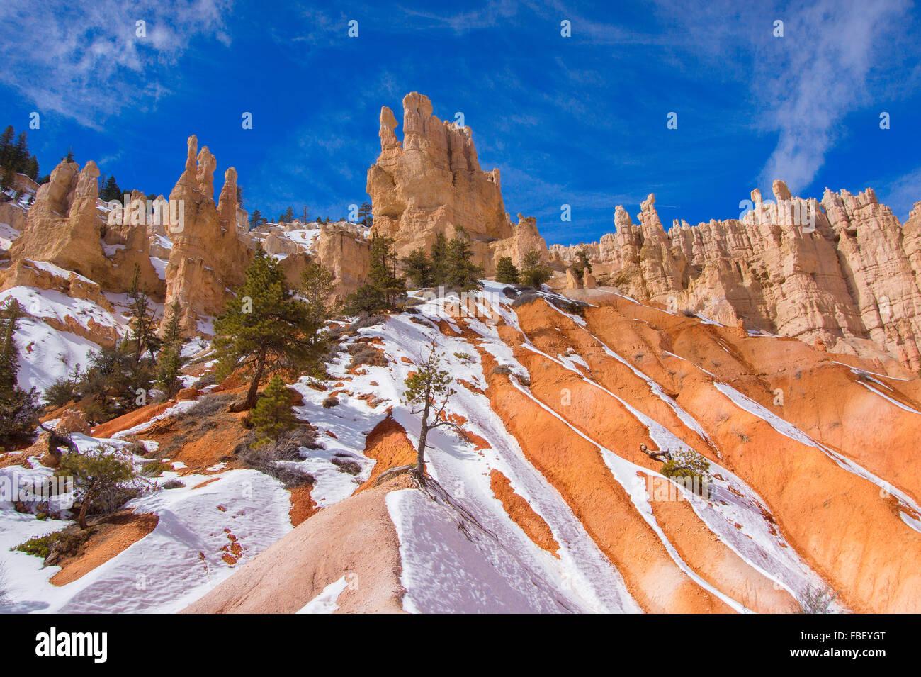 L'hiver à Bryce Canyon Photo Stock