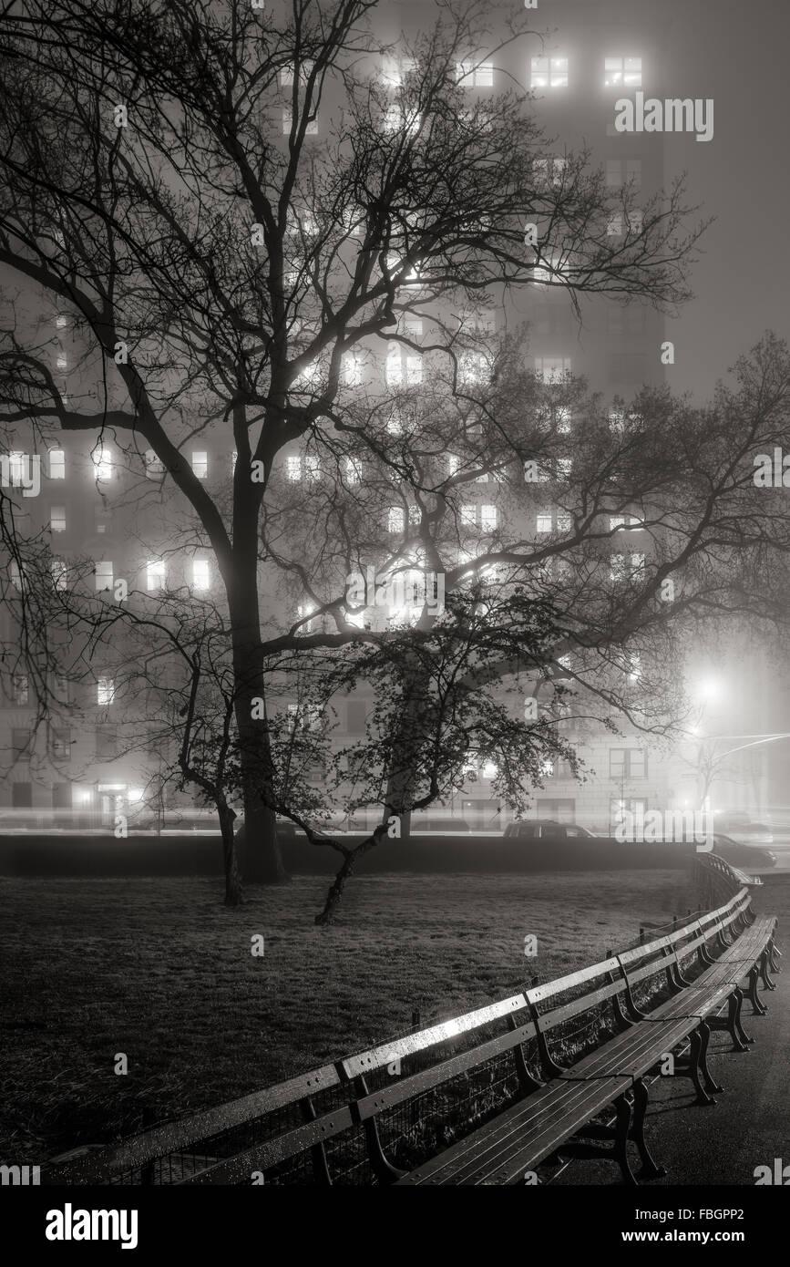 Brouillard dans Central Park la nuit. Arbres deviennent silhouettes éclairées par l'Upper West Side, Photo Stock