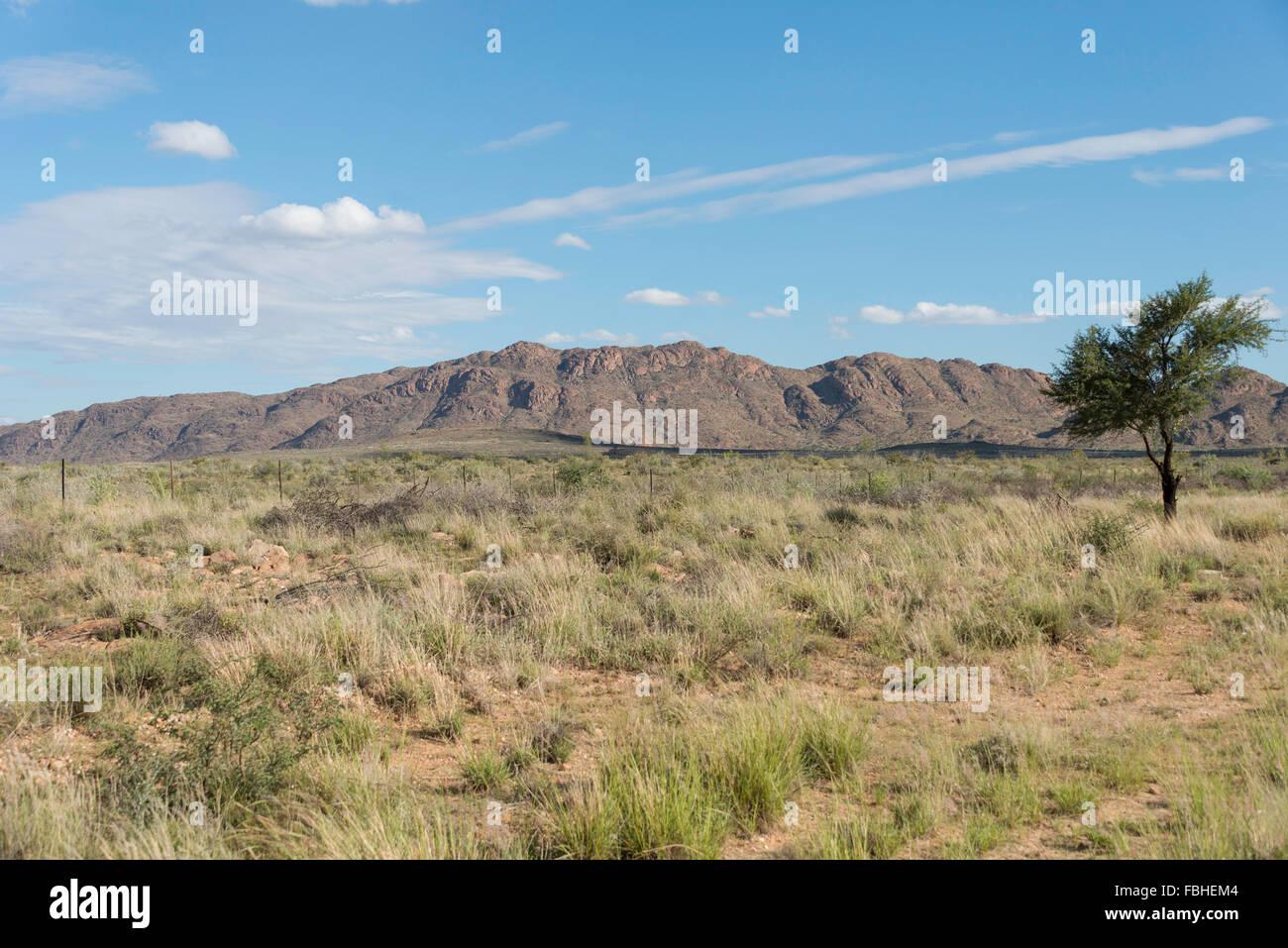 Namib Naukluft Park, Solitaire, Désert du Namib, Namibie Photo Stock