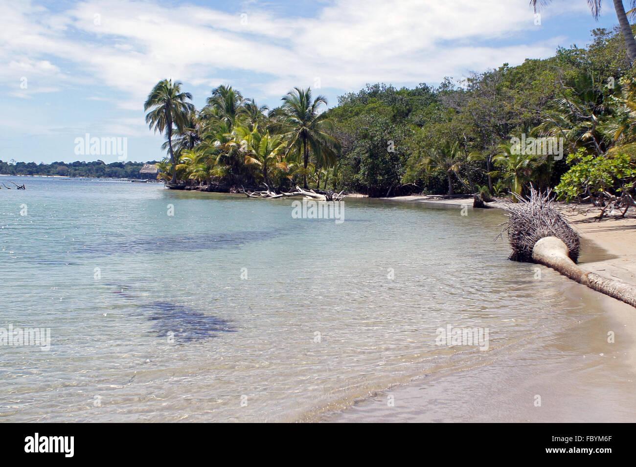 plage des Caraïbes Banque D'Images