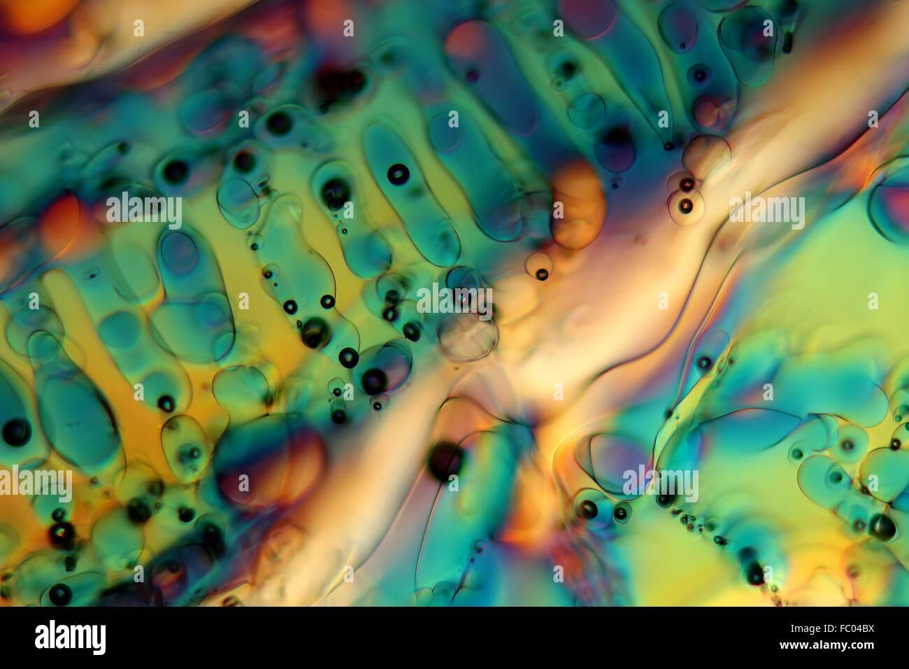 Des cristaux de glace sous le microscope. Photo Stock