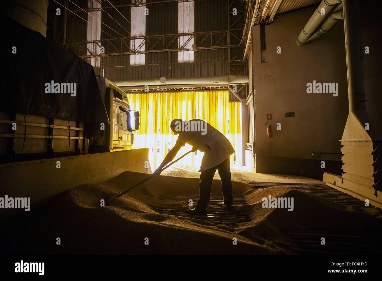 Vue de l'intérieur et de l'industrie de l'usine de farine Photo Stock