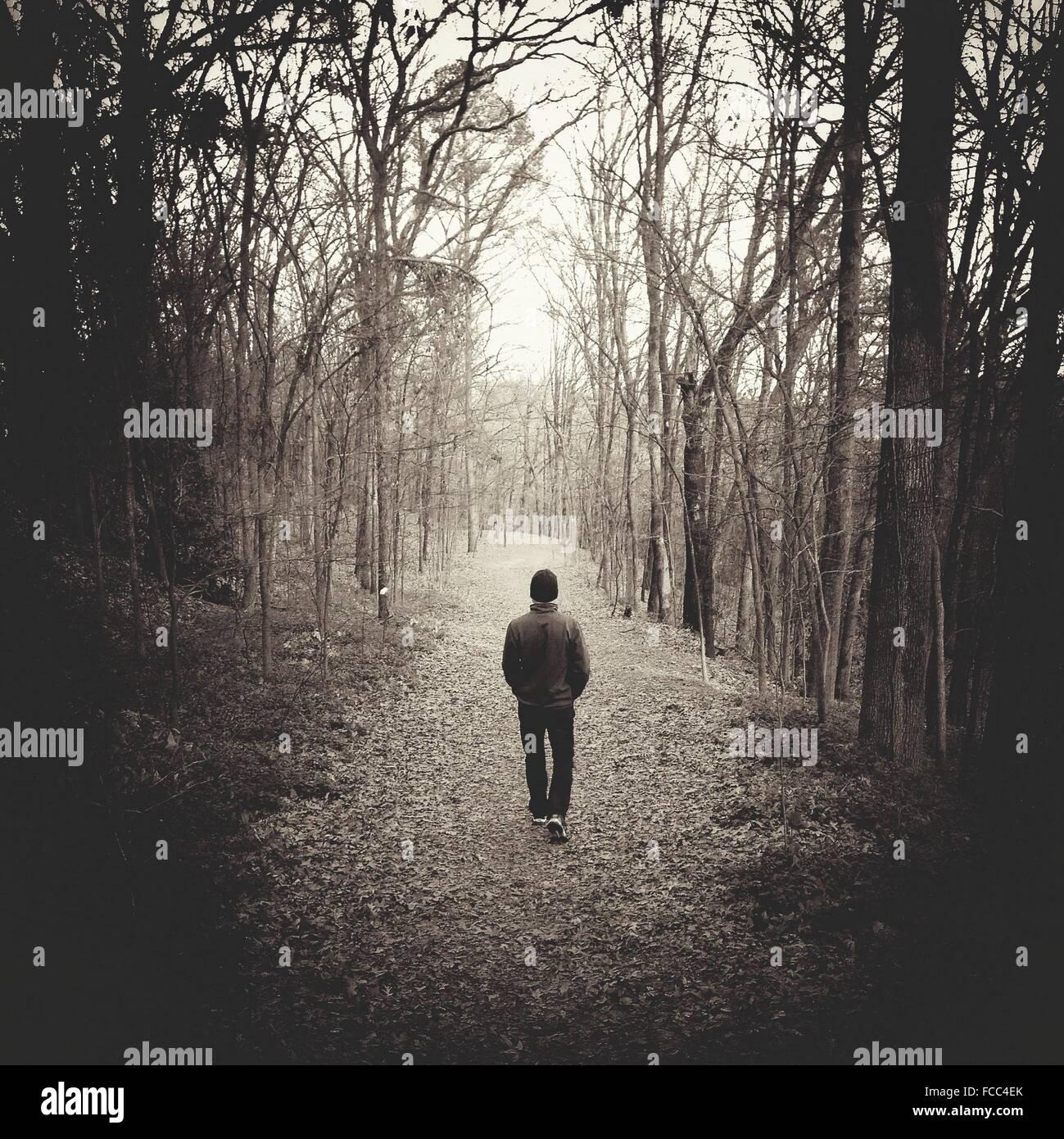 Homme marchant dans la forêt d'automne Photo Stock