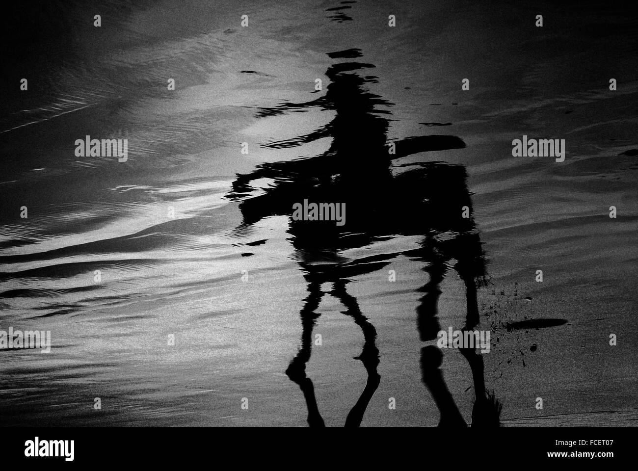 La réflexion de la personne sur l'équitation sur la plage Photo Stock