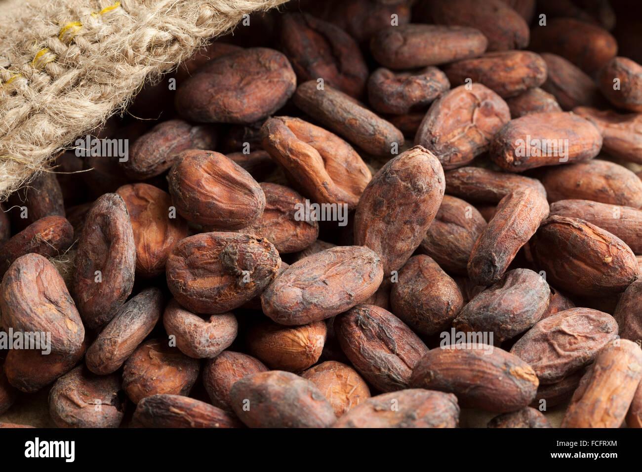 Sac en jute avec plein de fèves de cacao brutes Photo Stock