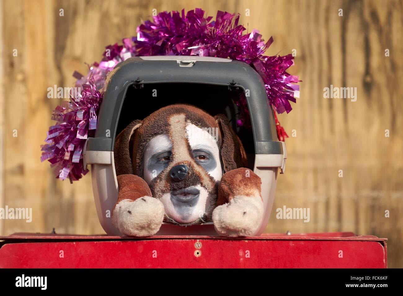 Dans l'homme déguisement de chien, Carnaval de Venise, Venise, Italie Photo Stock