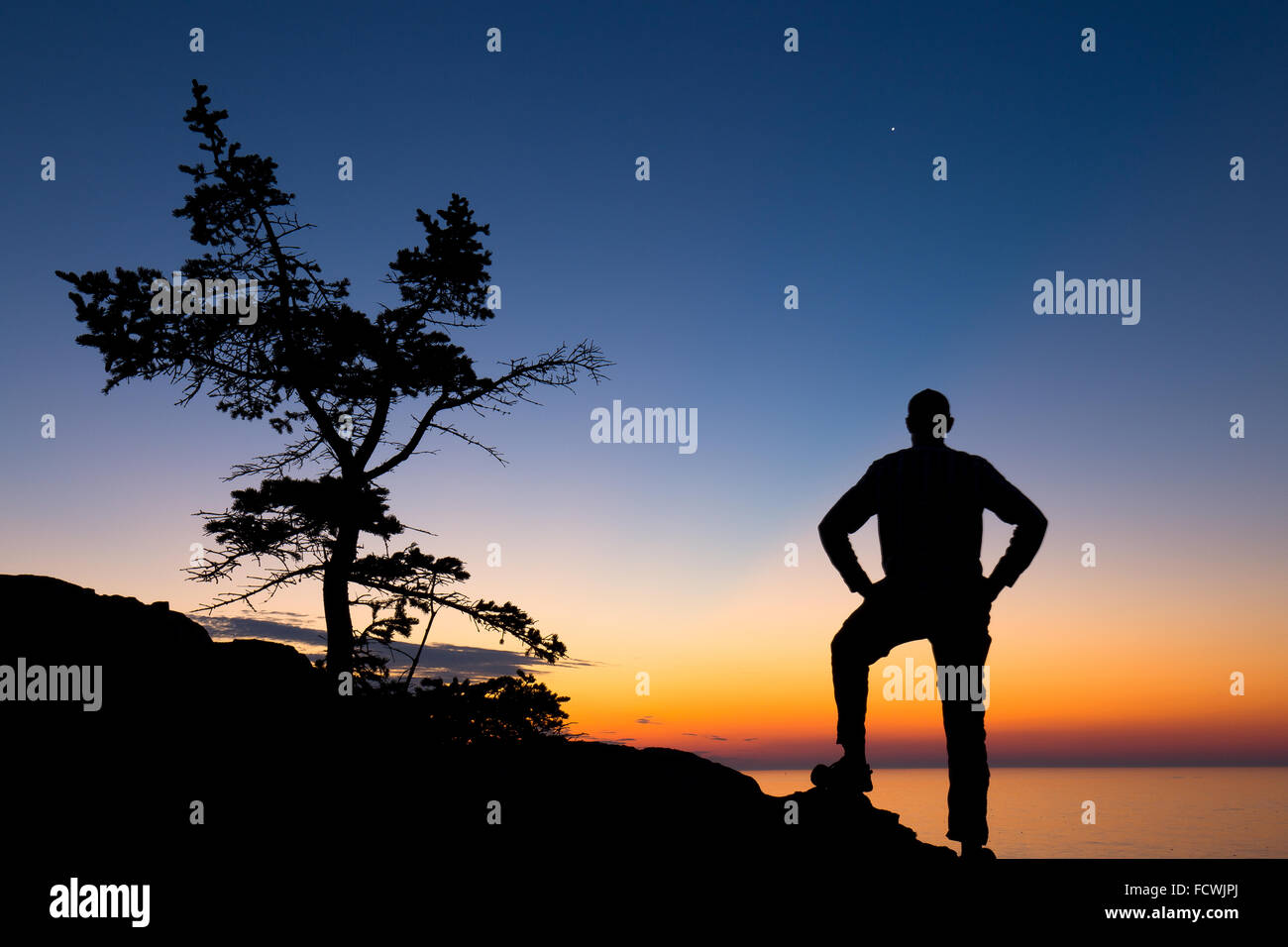 Silhouette d'un arbre et d'un randonneur sur la côte du parc national Acadia, Mount Desert Island, Photo Stock