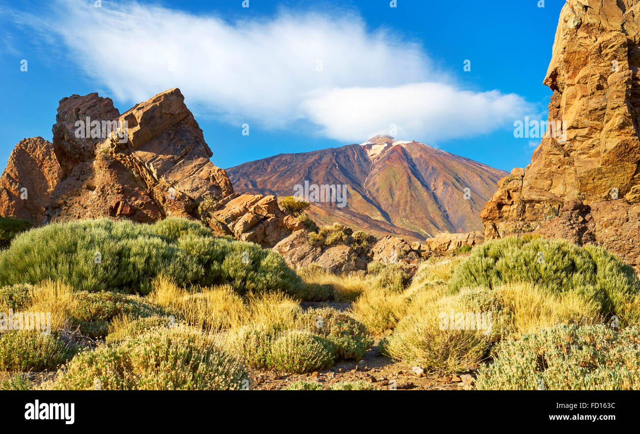 Le Parc National du Teide, Canaries, Tenerife, Espagne Photo Stock