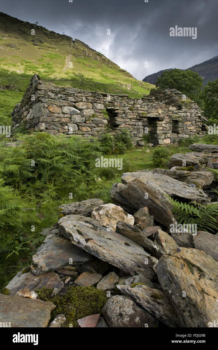 Les ruines d'un bâtiment de la mine avec Clogwyn Brith au-delà avec l'encoche de pente encore visible sur Hafod Y Llançà ferme, Galles. La mine de cuivre Erch mcg travaillait à partir de la dix-septième siècle jusqu'au début du xxe siècle, et a été désigné comme Schedul Banque D'Images