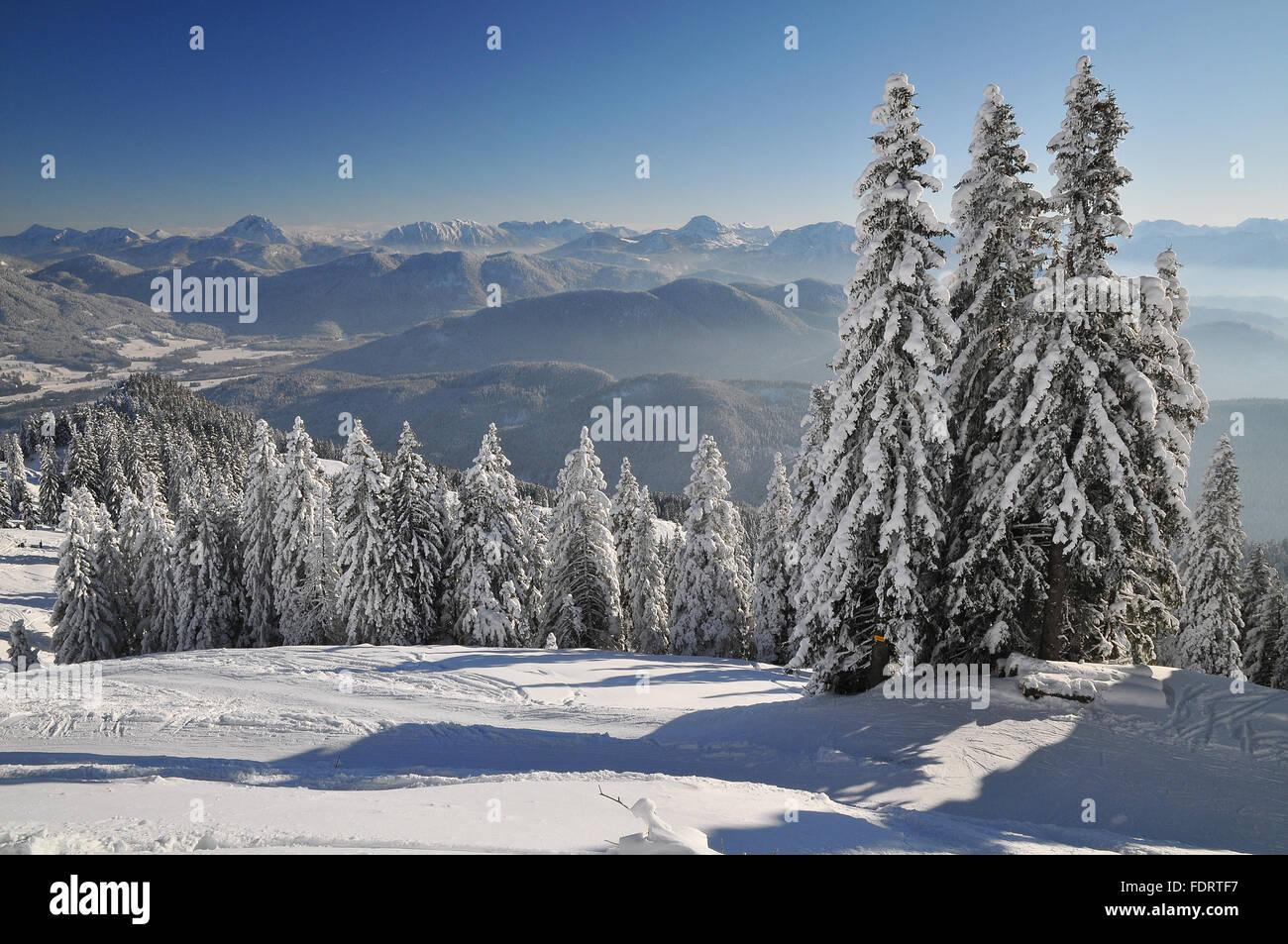Paysage d'hiver Banque D'Images