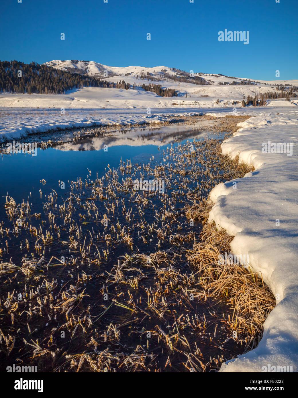 Le Parc National de Yellowstone, WY: Une glaciale Lamar River reflétant Speciman Ridge sur un matin d'hiver Photo Stock