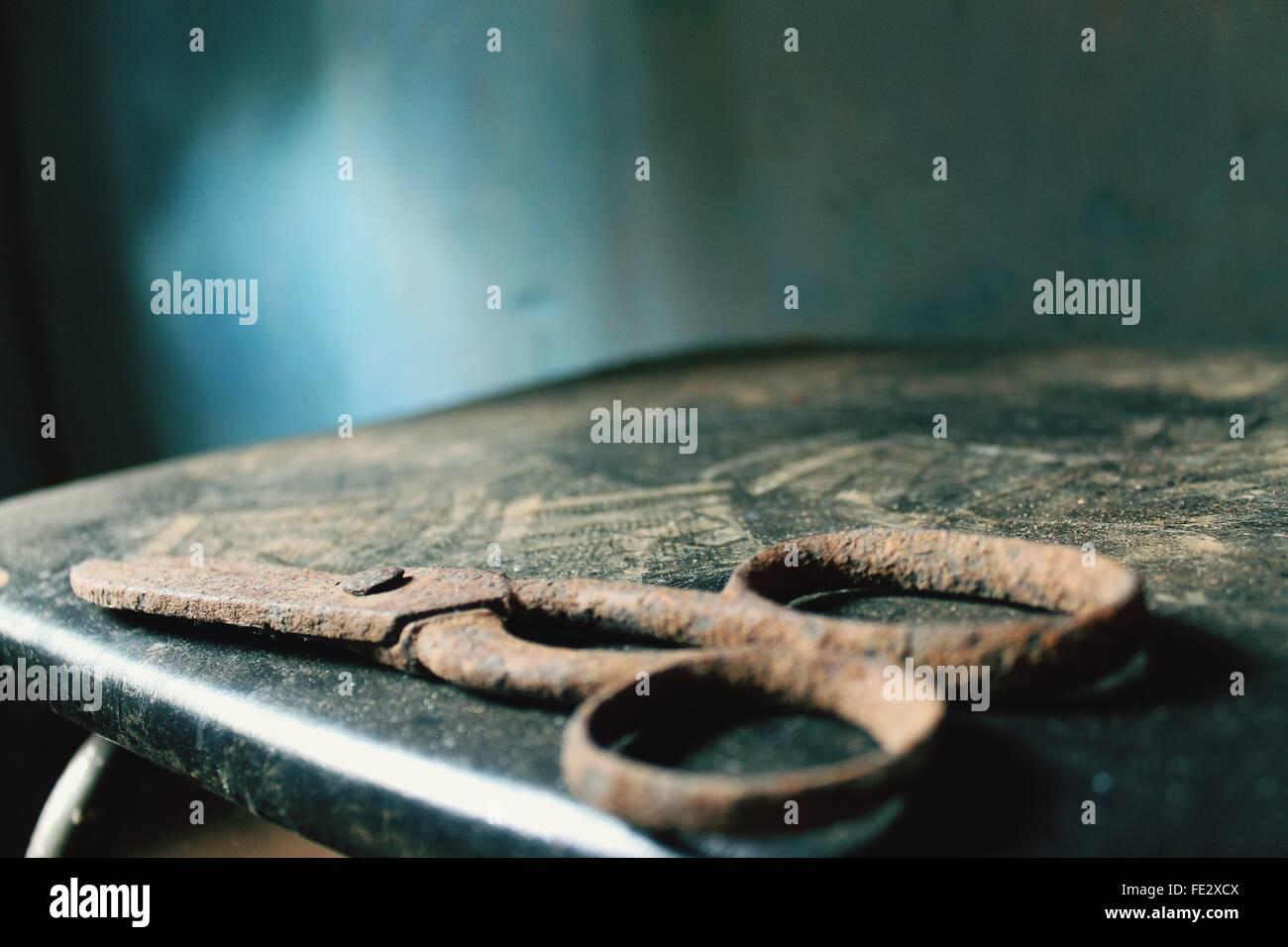 Avis de ciseaux rouillés Photo Stock