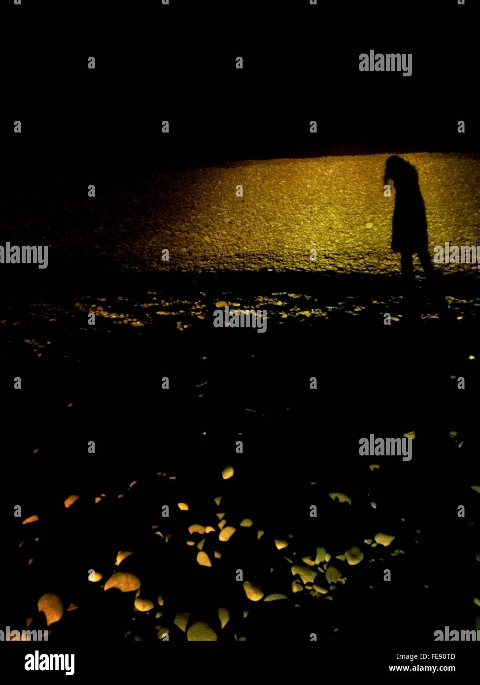 Silhouette Woman On Beach Photo Stock