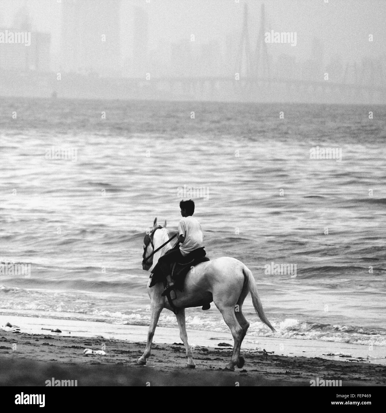 Personne Riding Horse On Beach Photo Stock