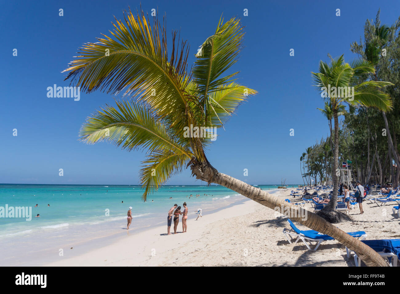 Palm beach, Playa Bavaro, Punta Cana, République dominicaine, Caraïbes Photo Stock