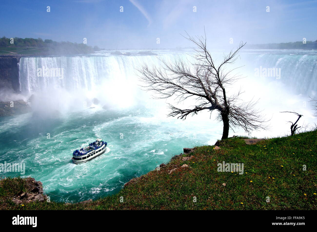 Horseshoe Falls au Canada du Niagara Photo Stock