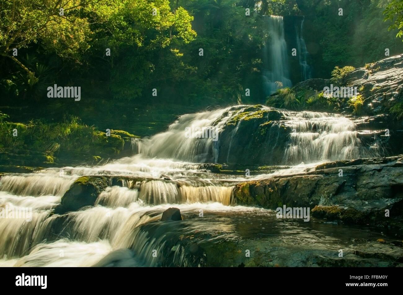 Purakaunui Falls, la Catlins, île du Sud, Nouvelle-Zélande Banque D'Images