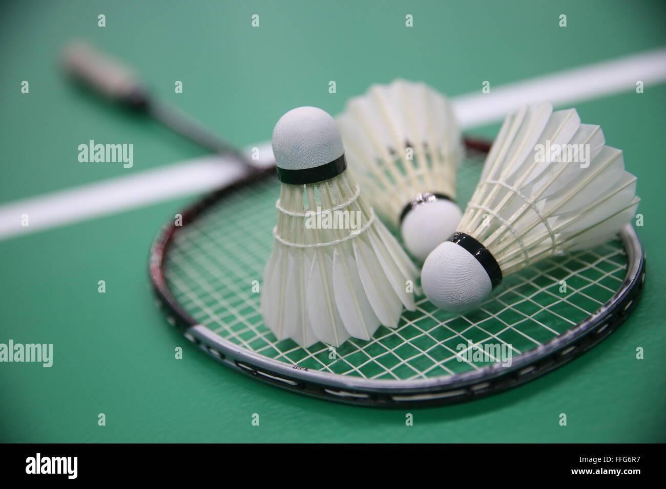 Kazan, Russie. Feb 13, 2016. Une compétition de badminton qui a eu lieu dans le cadre de l'ouverture de Photo Stock