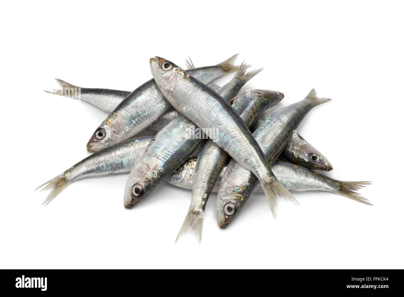 Matières premières fraîches sardines sur fond blanc Photo Stock