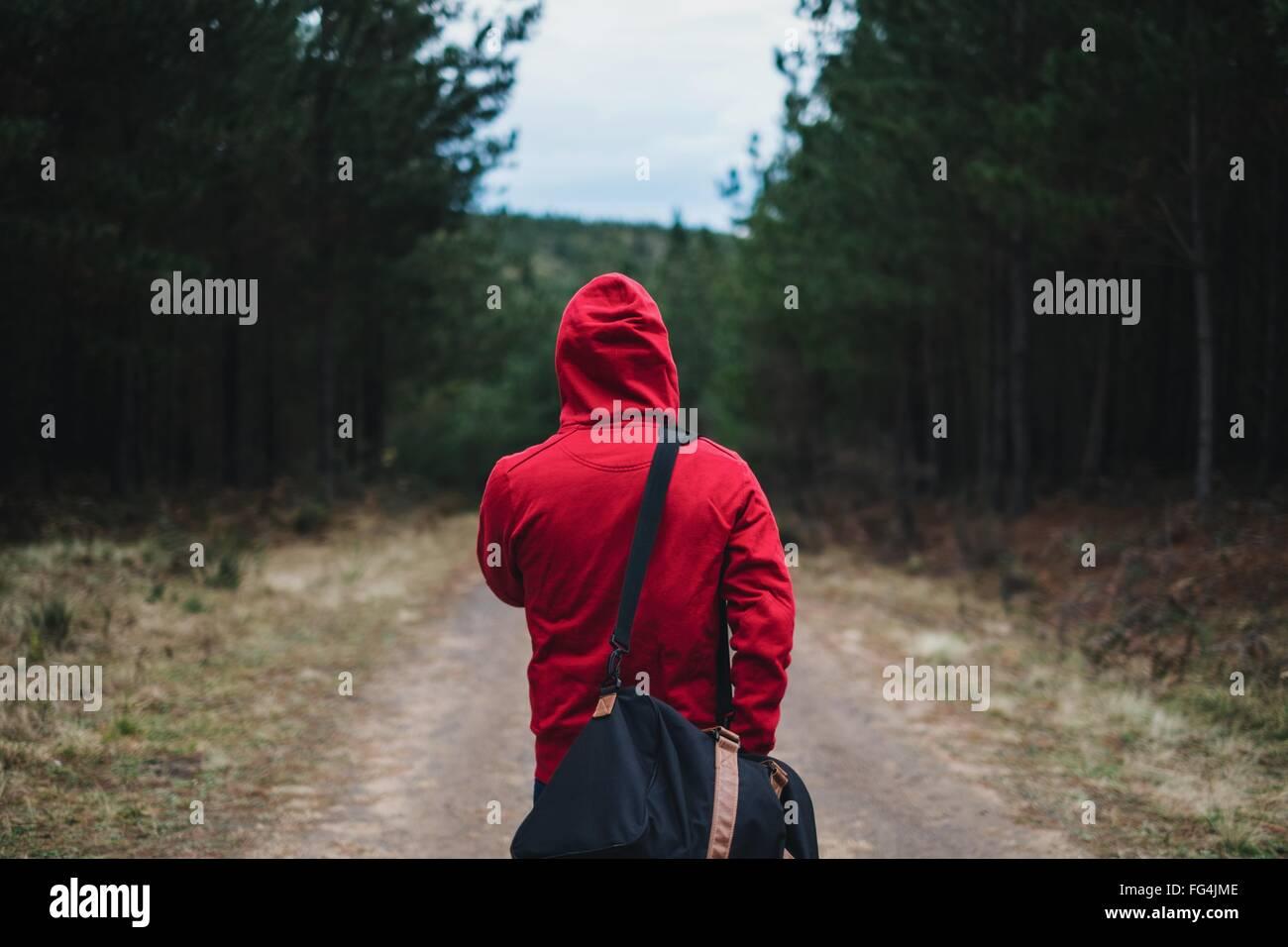 Vue arrière de la personne dans la région de Hooded Shirt marche avec sac dans Belanglo State Forest Photo Stock