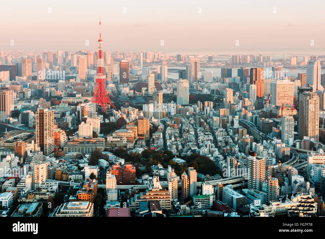 Tokyo, Japon - 14 janvier 2016: Tokyo Skyline at sunset. Photo Stock