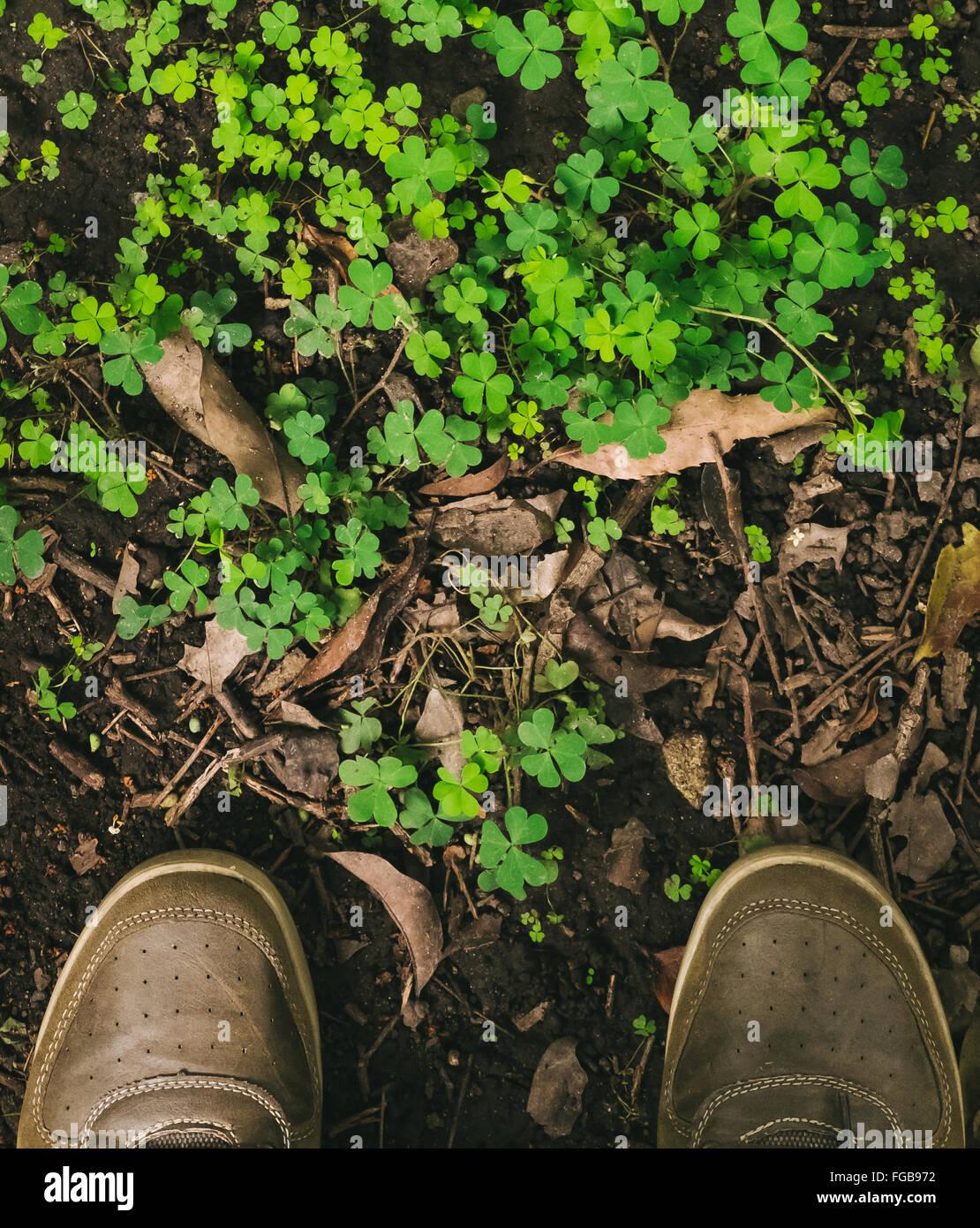 La section basse de l'Homme debout en face de plantes Photo Stock