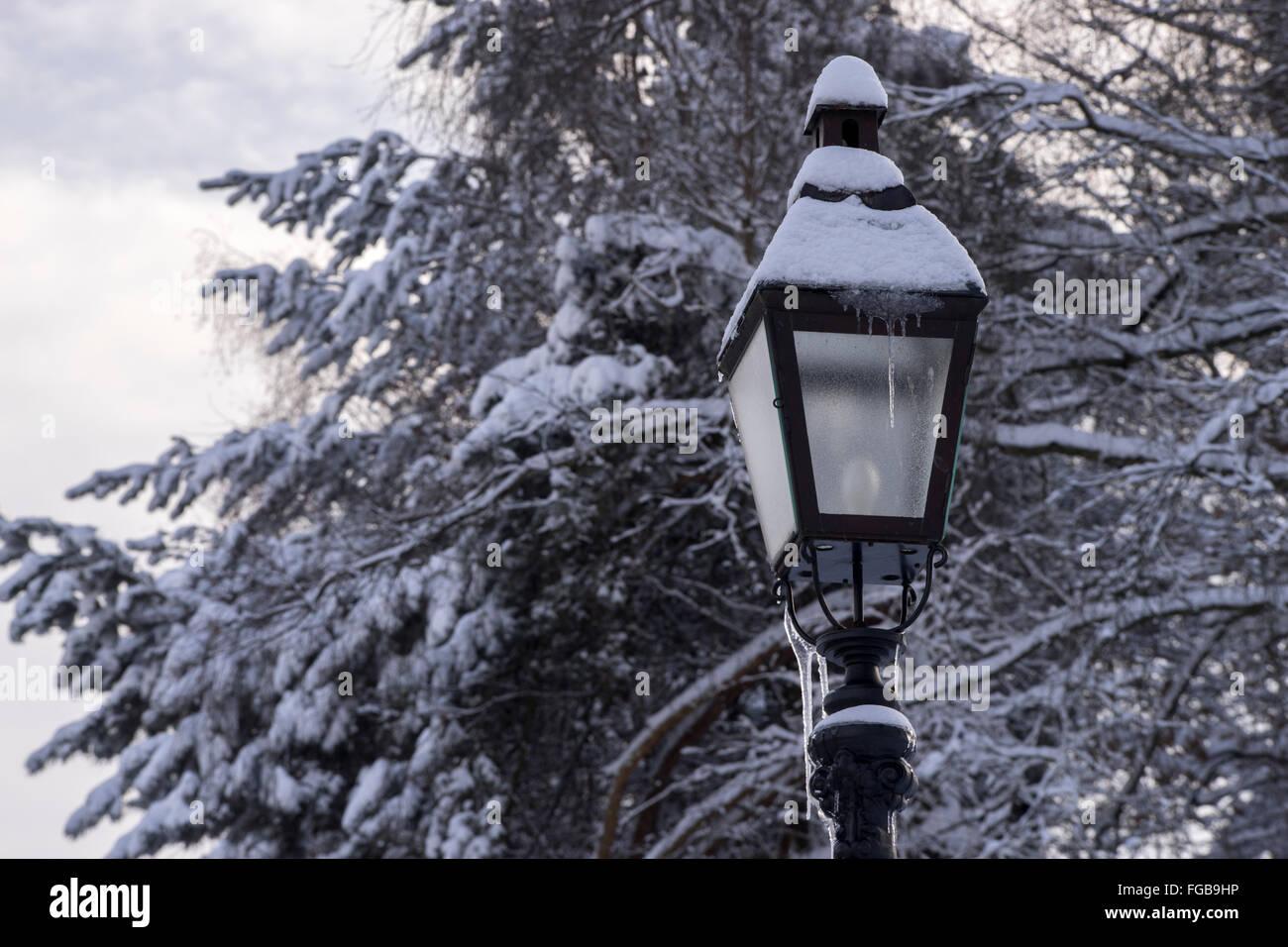 La lumière de la pole position à l'hiver Photo Stock