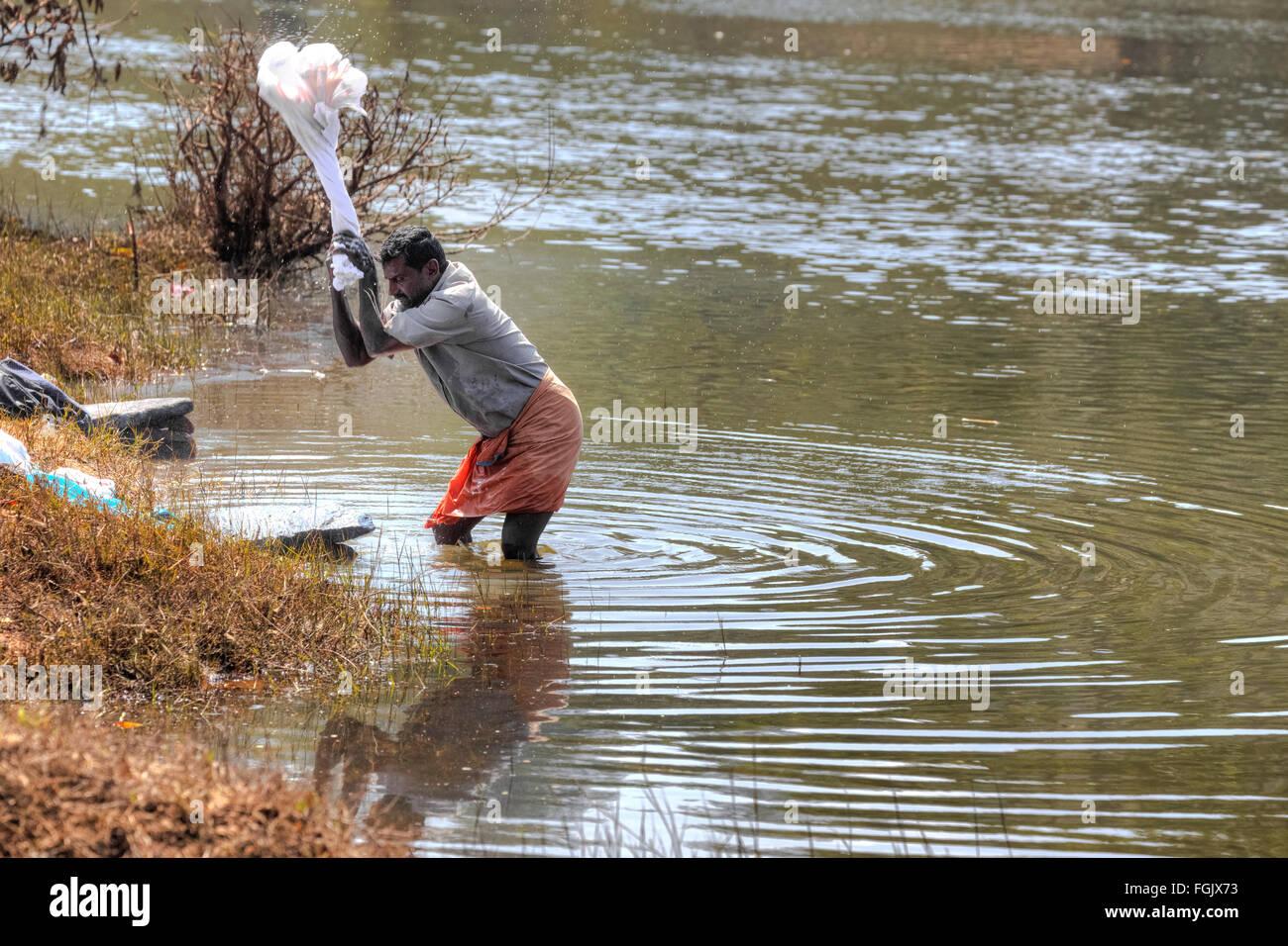 Jour de lessive dans la rivière de Periyar, Thekkady, Kerala, Inde Photo Stock