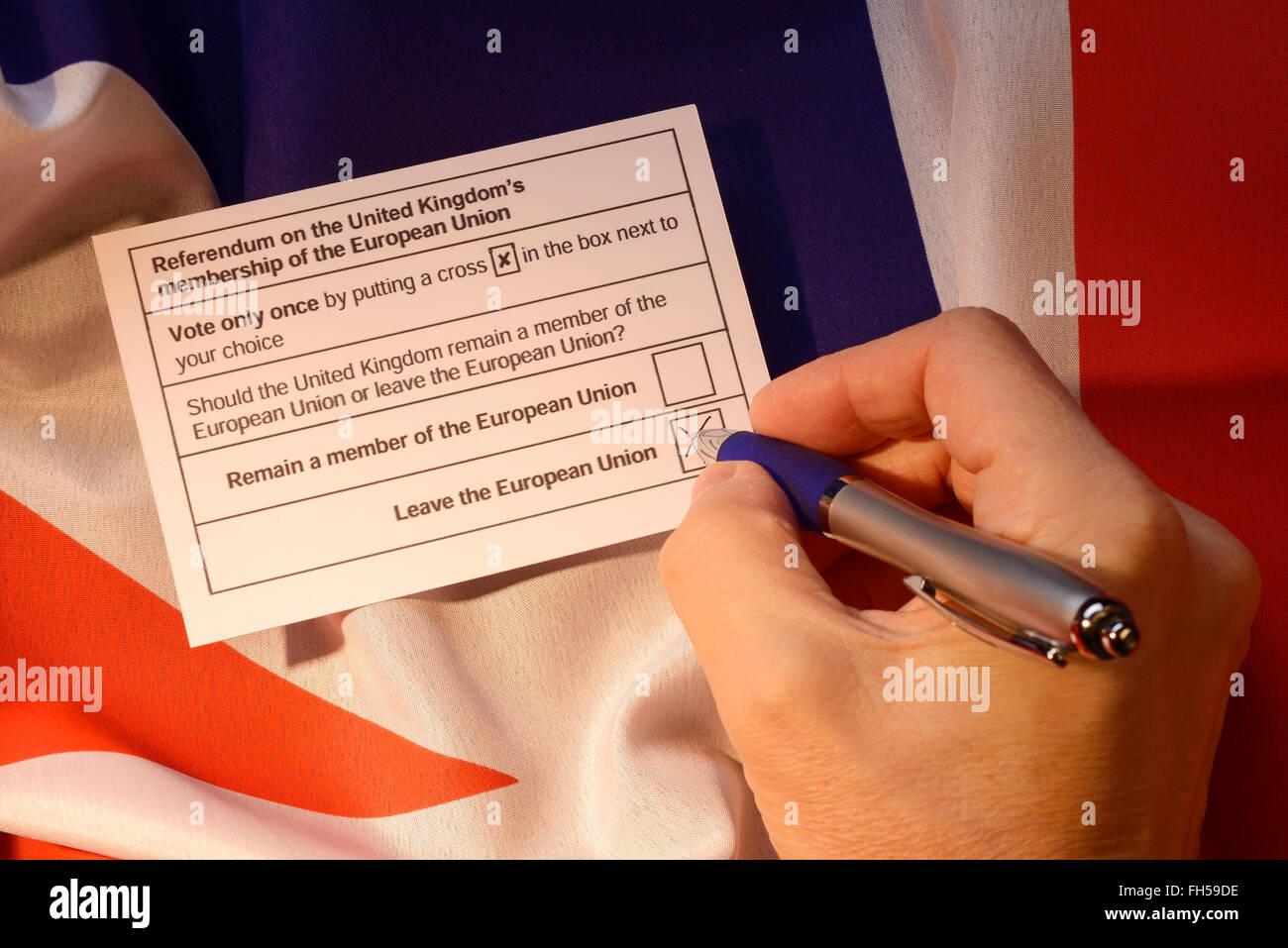 Une carte de vote pour le référendum sur l'adhésion britannique de l'Union européenne Photo Stock